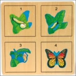 Puzzle de Capas 2 en uno