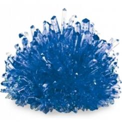 Cultivar cristalez azul