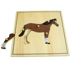 Puzzle caballo esqueleto