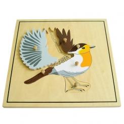 Puzzle pájaro esqueleto