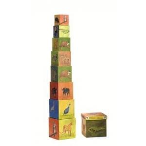 Cubos pirámide de la jungla